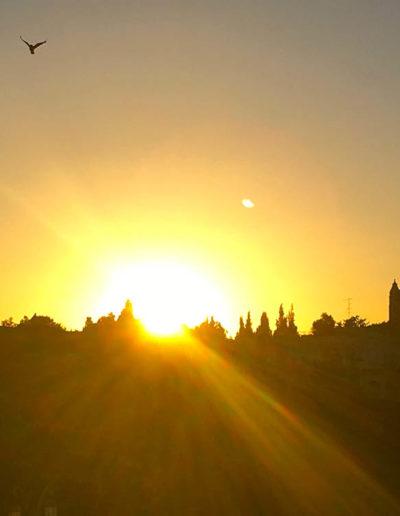 Every Day a New Beginning Jerusalem photo