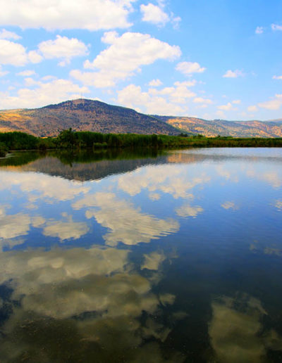 Floating Clouds over Hula Valley